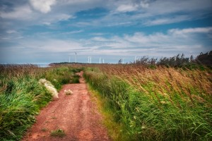 Travel_Photography_Blog_PEI_North_Cape_Hiking_Trail (1)
