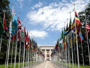 1200px-United_Nations_Flags_-_cropped